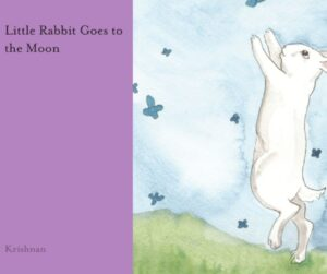 Little rabbit goes to the Moon